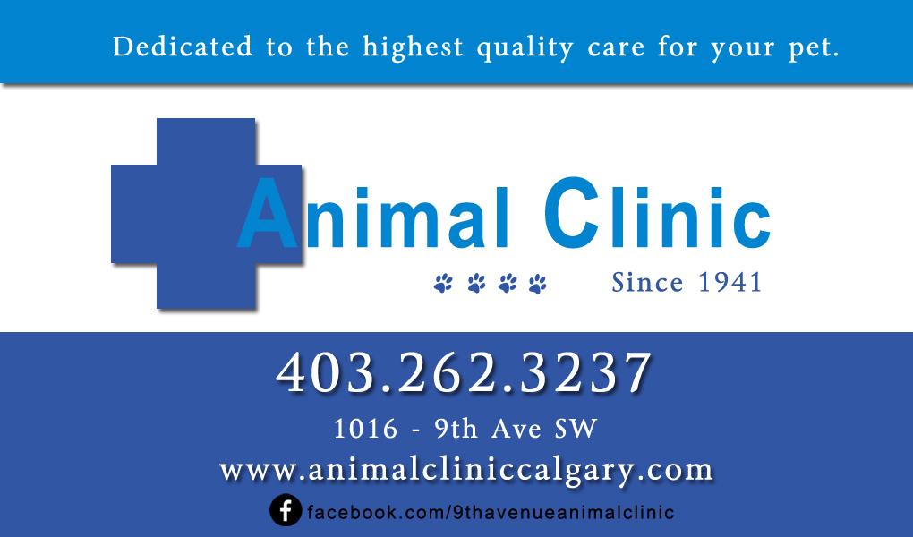 9_ave_animal_clinic_calgary_alberta_dr_jow