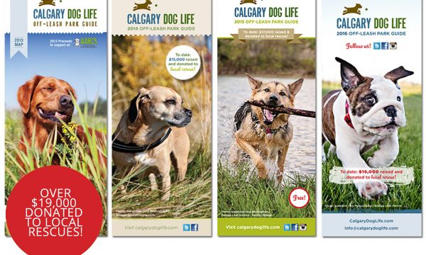 Calgary's Off-Leash Park Guide for Dog Guardians